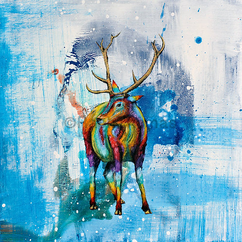 Rainbow Stag 1 by Raph Thomas