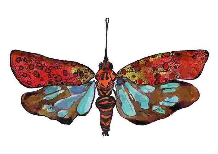 Lantern fly art print