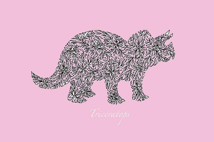 Triceratops (pink) by Lynn Selwyn-Reeves