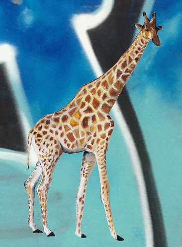 Giraffe and graffiti art print