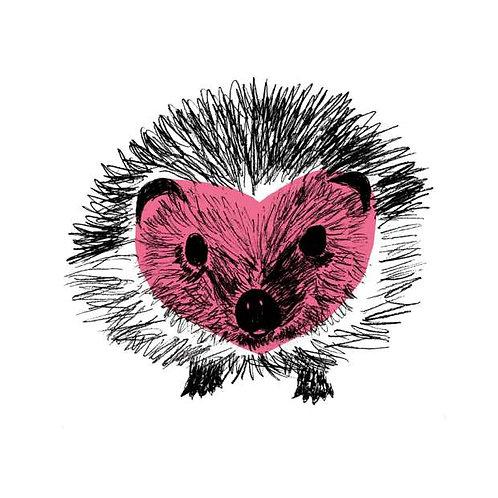 Pink hedgehog print