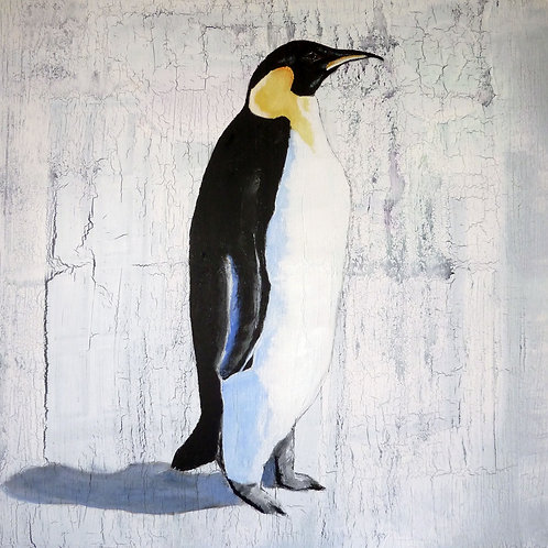 Single Emperor Penguin by Raph Thomas
