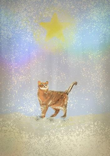 Cat print for children