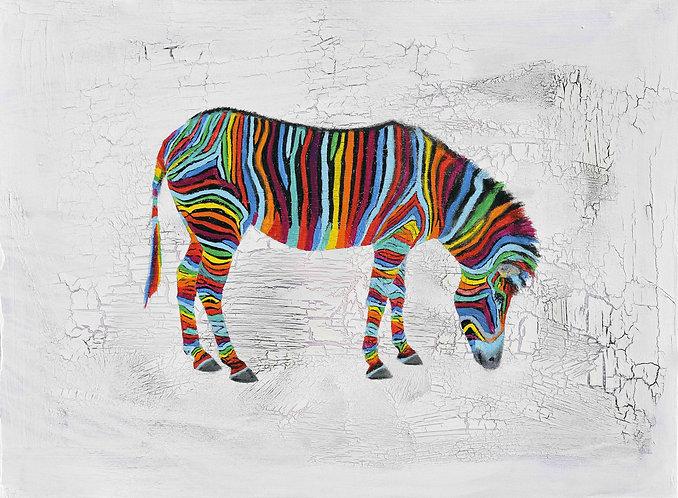Zebra 2 by Raph Thomas