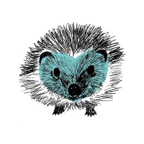 blue hedgehog print