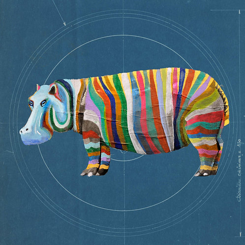 Square Hippo on Blueprint by Raph Thomas