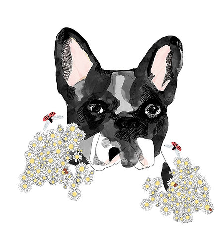 Frenchie by Jaybird Illustration