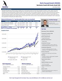 Merlin Focused Growth MO25M Fact Sheet_P