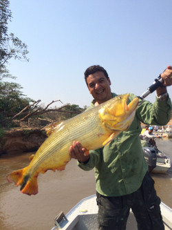pescaria3