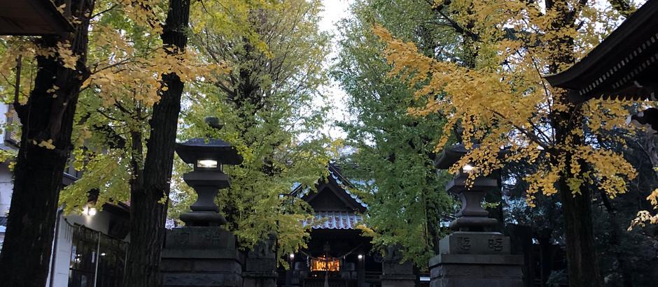 金村別雷神社をデザインから見てみよう!