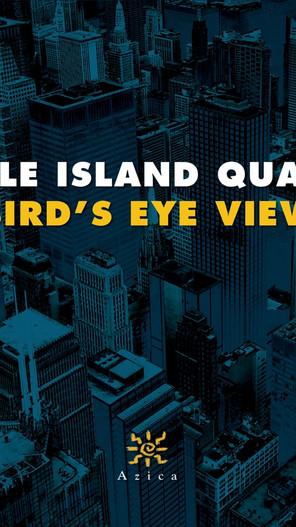 Turtle Island Quartet - Bird's Eye View