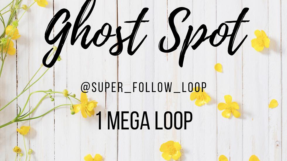 1 Mega Loop (June 21st, Monday)