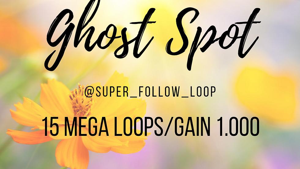 15 Loops/1.000 Followers Package