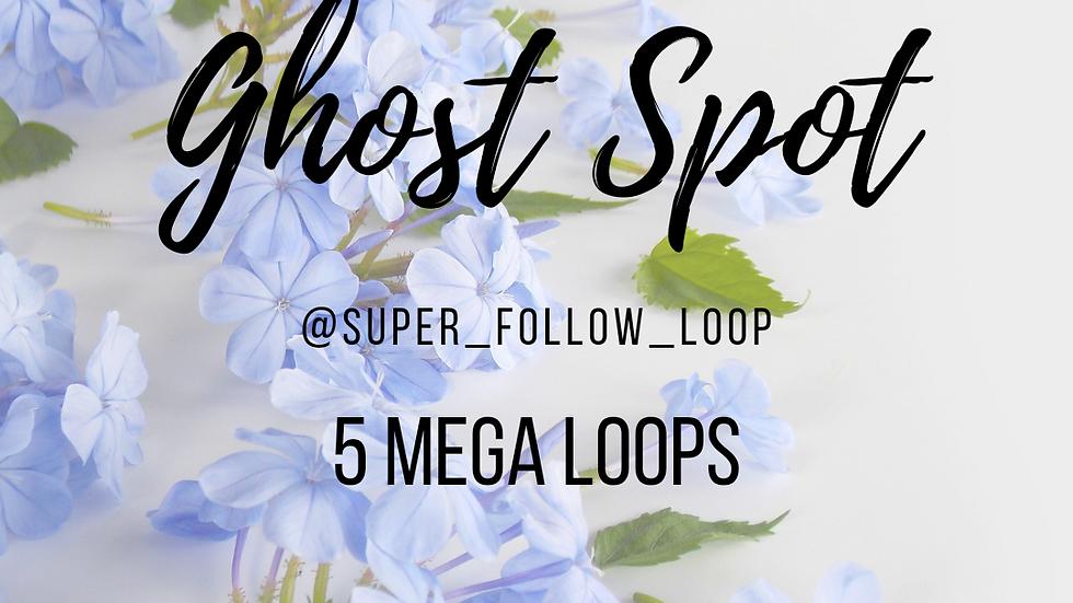 5 Mega Loops