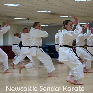 Training and Grading with Sensei Brennan