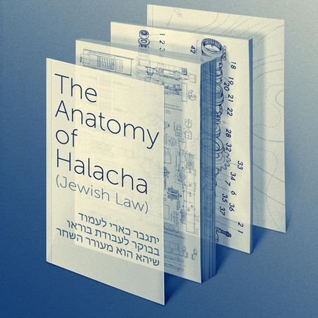 Anatomy-of-Halacha_04_02_small.jpg