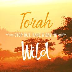 course-torah-wild.jpg
