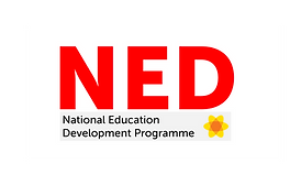 Ned Logo.png