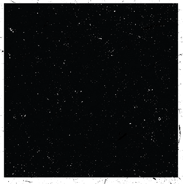 Malcolm - stars - high rez - The Dark Ag
