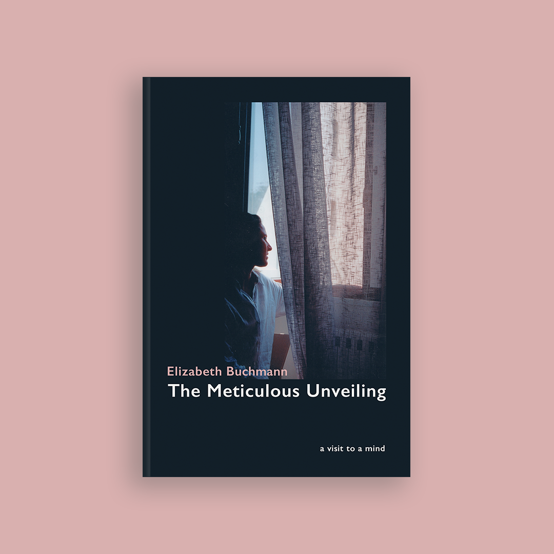 The Meticulous Unveiling by Elizabeth Buchmann