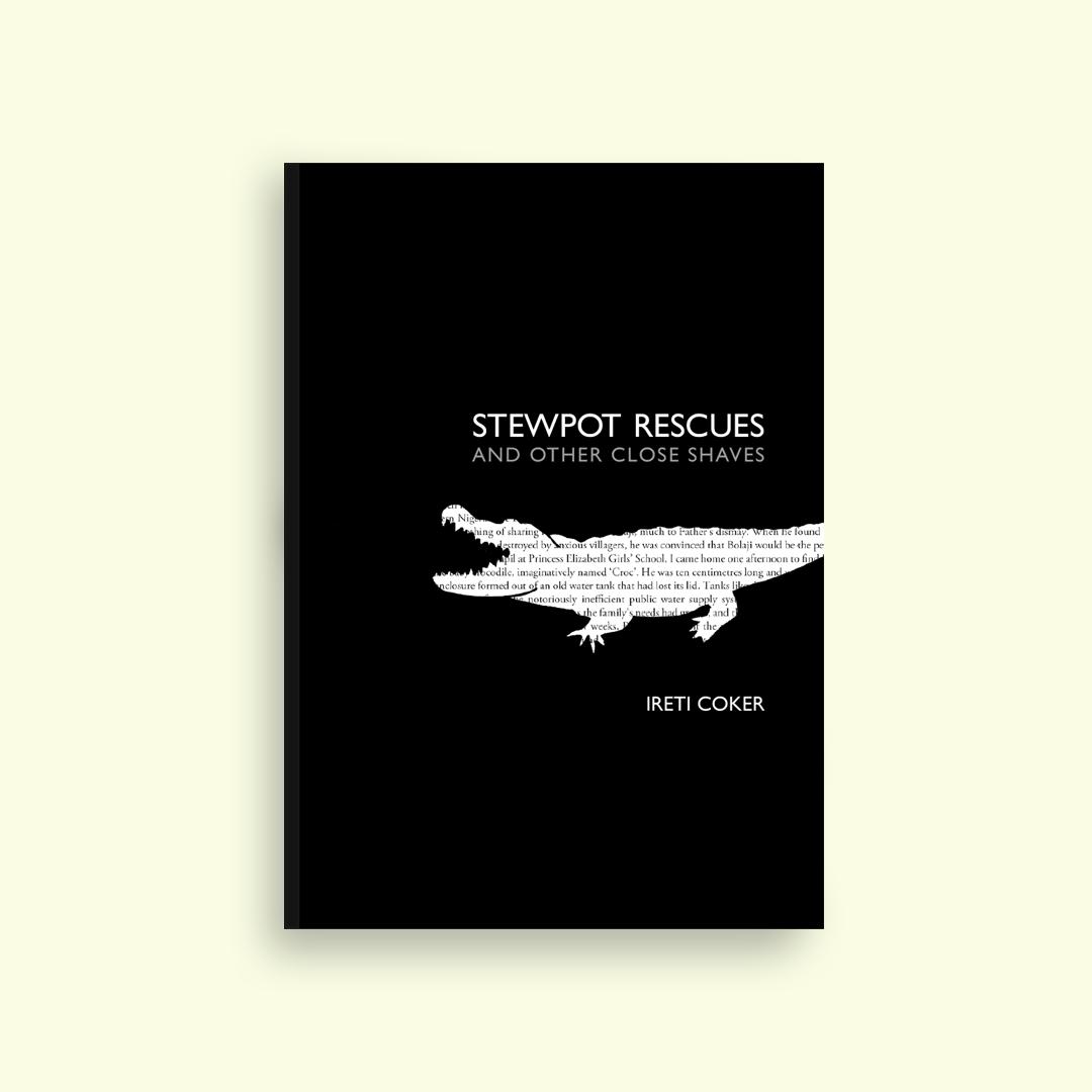 Stewpot Rescues by Ireti Coker