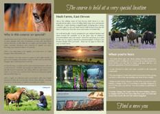 Tri-fold Leaflet – side 2