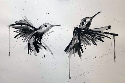 2 Humming Birds #1
