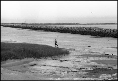 Fishing, Cape Cod