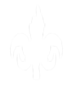 Logo Noal.png
