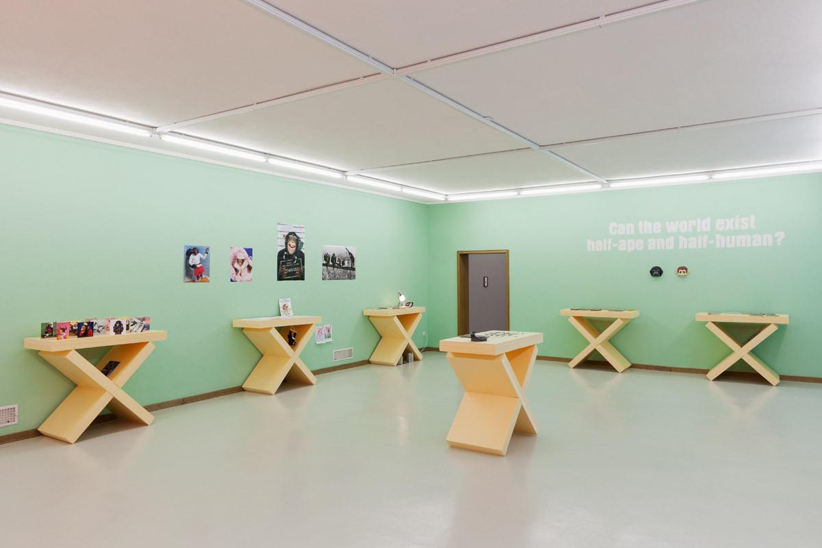 LEARNING TO LOVE, Kunsthaus, Glarus, 2014. [Gunnar Meier]