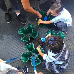School Garden Event