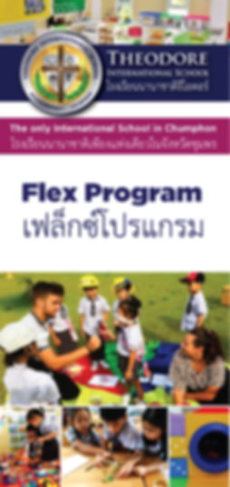 TIS-flex-program1.jpg