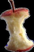 apple-core_edited_edited_edited.png