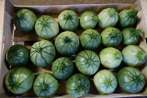 Courgette Ronde / 1Kg