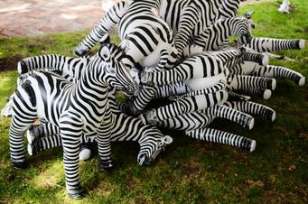 Inflatables Zebra