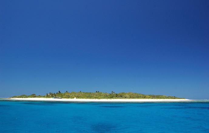 Surprise, petite île inhabitée de 800 mètres par 400 mètres, au nord de la Grande Terre de Nouvelle Calédonie. C'est un site privilégié de nidification d'oiseaux marins et de ponte de Tortue marines : petite oasis de biodiversité malencontreusement envahie par le Rat.