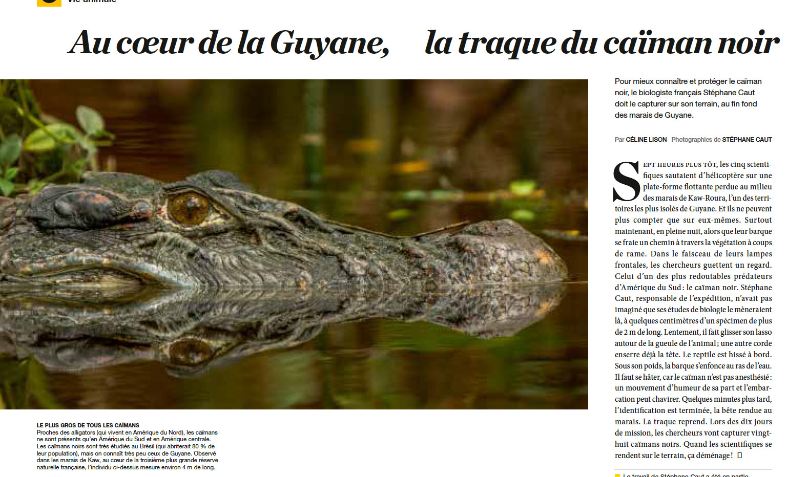 national geographic stephane caut page 1