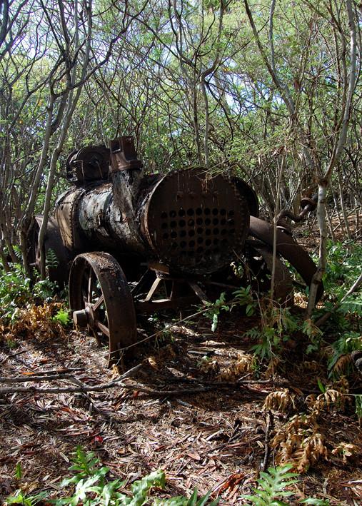 ision irréaliste d'un vestige de l'époque d'occupation de l'île entre 1900 et 1910, témoin de l'exploitation du guano (excrément d'oiseaux), constituant de la poudre à canon.