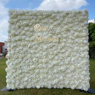 Classic White-Ivory Flower Wall