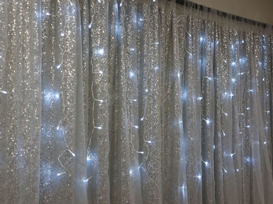 -- Princess Backdrop -- 10' W x 10' H - LARGER SIZES AVAILABLE - Silver w/ Tulle
