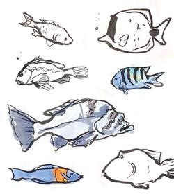Aquarium_insta_01