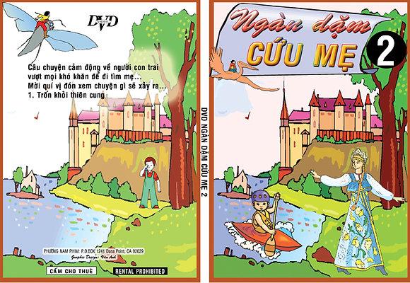 DVD Ngan Dam Tim Me # 2