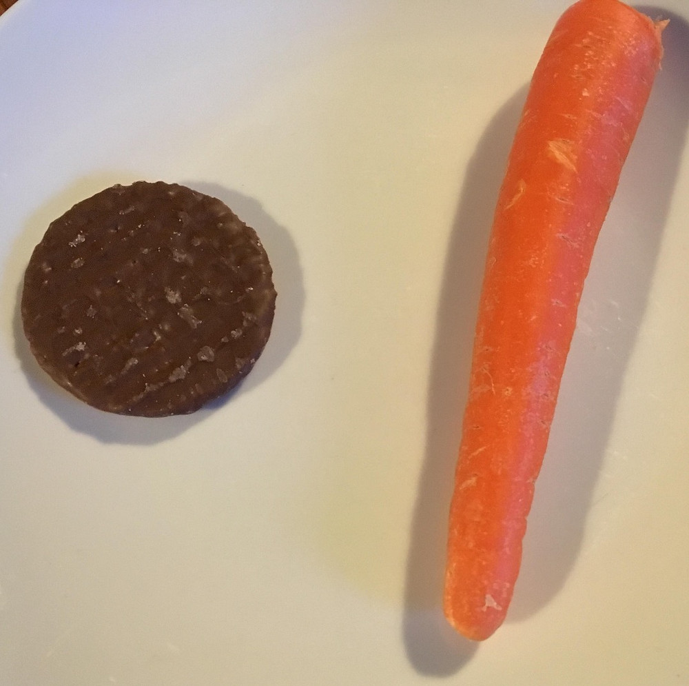 chocolate biscuit, or carrot?