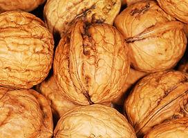 walnuts-101462_1920.jpg