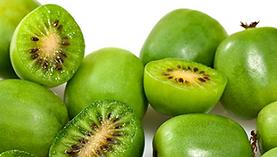 Kiwi_Frucht2.PNG