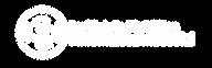 logo-IRI_BN.png