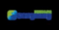 Dongsung_Logo.png