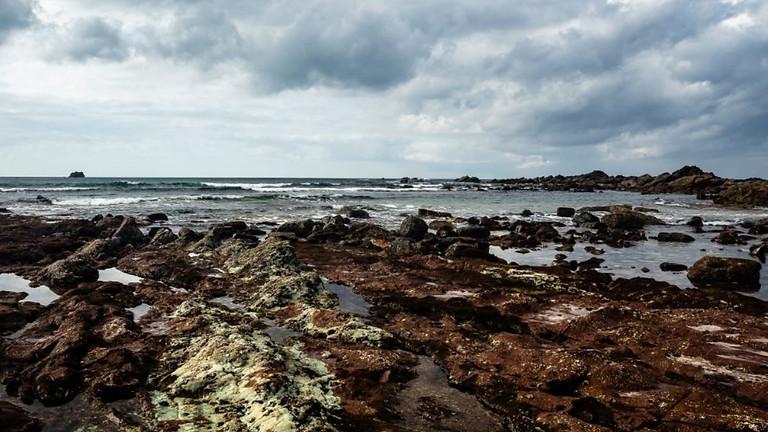 ALFA apresenta exposição de fotografia em novembro nas montras criativas da Baixa de Faro