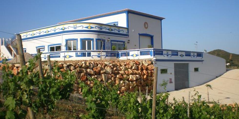 Wine Tour à Quinta do Francês