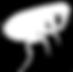 Inset Time | Dedetização RJ | Pulga